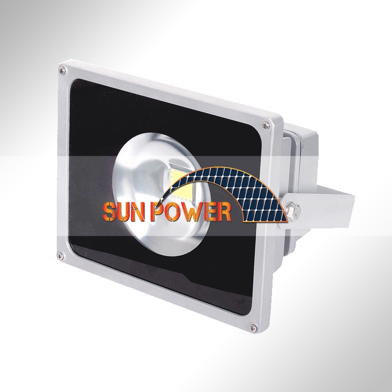 LED Flood Light   DL-F